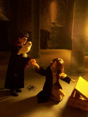 Berühmte Zauberlehrlinge