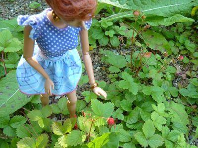 Luzy entdeckt die englische Gartenkultur 6