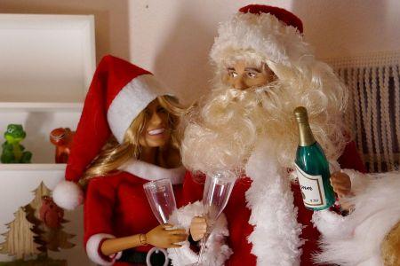 Luzys wilde Weihnachten (2)