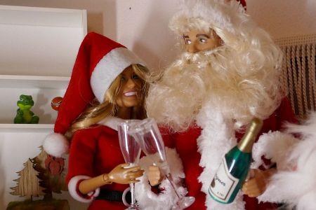 Luzys wilde Weihnachten (8)