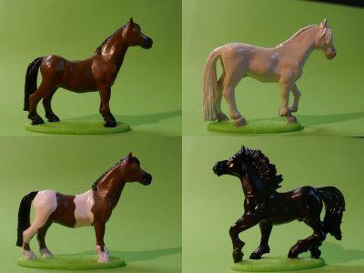 Rassige Pferde