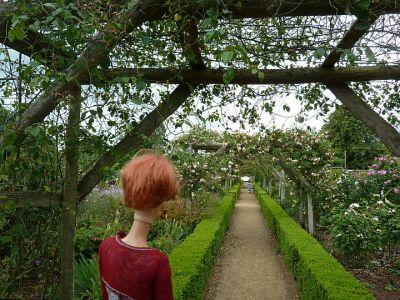 Luzy entdeckt die englische Gartenkultur 1