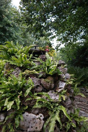 Luzy entdeckt die englische Gartenkultur 2