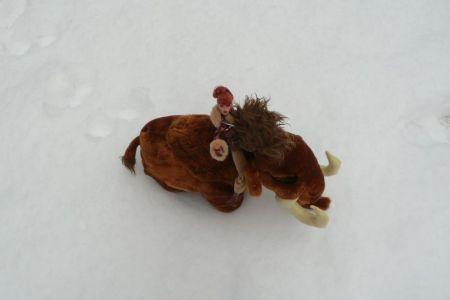 Luzy im Schnee by martinaa 5