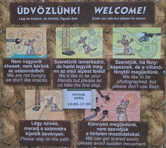 Luzy in Budapest (04)