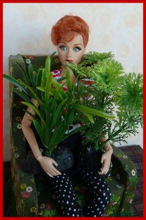 Luzy war einkaufen (4) - Pflanzen aus der Aquaristik-Abteilung