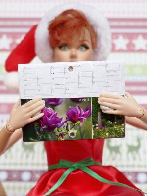 Luzys Kalender 2010 2