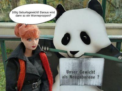 (1) Luzys Erlebnisse im Wiener Zoo (1)