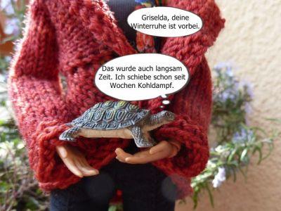 (6) Luzys Schildkröte wird erweckt
