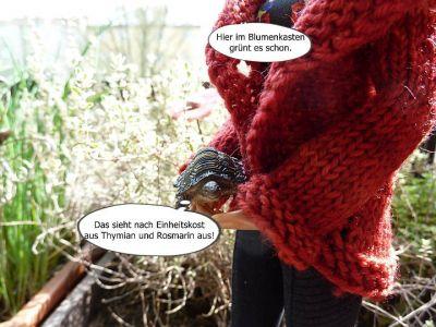 (6) Luzys Schildkröte wird erweckt (2)